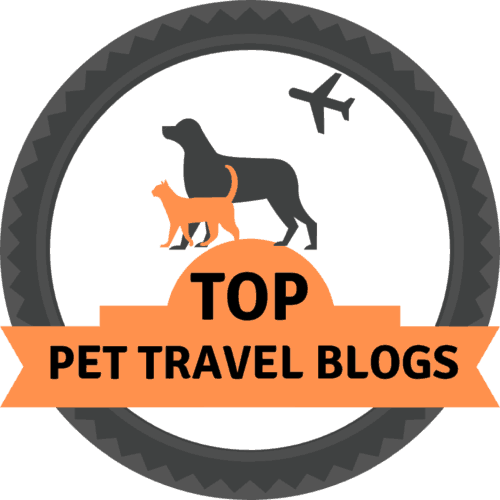 Top Pet Travel Blogs